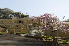 San José Costa Rica Fotografering för Bildbyråer