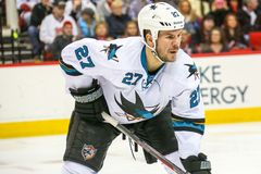 San Jose Sharks defenseman Scott Hannan Royalty Free Stock Image