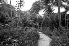 San Juan Imagenes de archivo