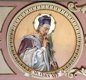 San Juan de Nepomuk imagen de archivo