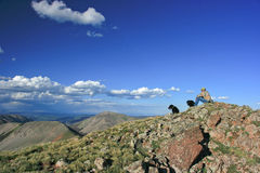 San Juan Mountain View. Surveying the view from the top of a mountain in Colorados's San Juan's Royalty Free Stock Photo