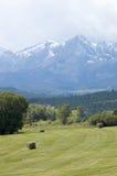 San Juan Mountains. Green field and the San Juan Mountains, Colorado Royalty Free Stock Image