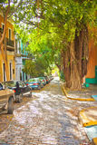 San Juan. Puerto Rico - Jan. 18, 2011: Quaint old narrow street, lined with banyon trees, in a residential area in old stock images