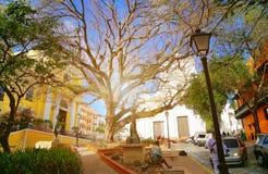 San Juan streets on a bright sunny day. Puerto Rico, San Juan streets on a bright sunny stock images
