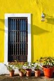 San Juan viejo - paredes amarillas, plantas Potted foto de archivo libre de regalías