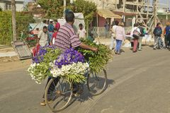 San Lazaro Catholic Church and bicyclist with flowers in El Rincon, Cuba Stock Photography