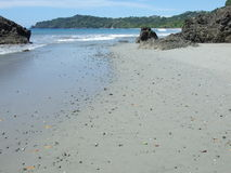 San Manuel Antonio Beach, Costa Rica, opinião da linha costeira Foto de Stock