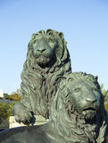 San Marco Lions som lokaliseras i Jacksonville Royaltyfria Foton