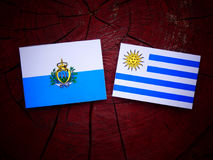 San Marino flag with Uruguaian flag on a tree stump isolated Royalty Free Stock Image