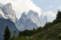 San Martino di Castrozza - Trentino Arkivfoto