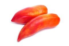 San Marzano tomatoes Royalty Free Stock Photos