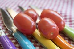 San marzano tomatoes on colored knives. Fresh san marzano tomatoes on colored knives Royalty Free Stock Image