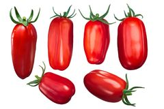 San Marzano tomatoes. Long, Scatolone, Lampadina, short, whole fruits with sepals Royalty Free Stock Photos