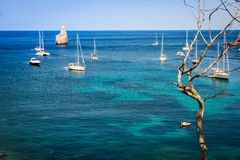 San Miguel - Ibiza - Balearic Islands - Spain Stock Images