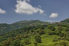 San Nicolao village with mountains, Santu Niculaiu, Corsica, France Stock Photo