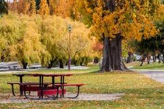 San Omer Park, Queenstown, Nuova Zelanda Fotografia Stock Libera da Diritti