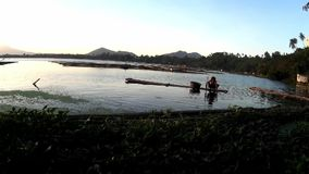Lake fisherman paddling row boat on lake at sundown. San Pablo City, Laguna, Philippines - February 23, 2016: lake fisherman Paddling bamboo row boat on a stock video