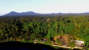 Trees and vegetation on mountain lake shore. Drone aerial. San Pablo City, Laguna, Philippines - January 26, 2018: Trees and vegetation on mountain lake shore stock video