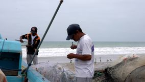 San Pedro, Ecuador - 20180915 - Vogel-Sit On Sand As Man-Verlegenheits-Netz stock footage