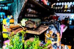 San Pedro kaktus jak sprzedający w Peruwiańskim rynku w Iquitos, Peru obraz stock