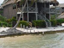 San Pedro Kapitän-Morgans, Amber Caye Belize Stockbild