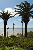 San Pedro, Point Fermin Park, Los Angeles Stock Image