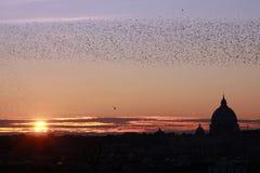 San Pedro Roma en la puesta del sol foto de archivo libre de regalías