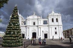 San- Pedrokathedrale, Leon, Nicaragua Stockbilder