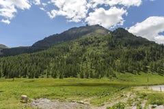 San Pellegrino Pass, Trentino Alto Adige, Alps, Dolomites, Italy: Landscape at the San Pellegrino Pass 1918 m. It`s a high moun. Tain pass in the Italian royalty free stock photos