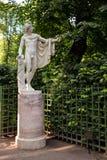 San Pietroburgo, Russia - 27 luglio 2016: La statua Apollo Belvedere, copia Fotografia Stock Libera da Diritti