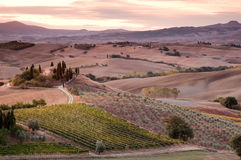 San Quirico d´Orcia, Tuscany Stock Images