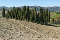 SAN QUIRICO D& x27; ORCIA, TOSCÂNIA/ITÁLIA - 31 DE OUTUBRO DE 2016: Paisagem bonita de tuscan perto de San Quirico D& x27; Orcia Imagem de Stock