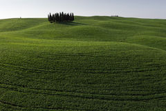 San Quirico d'Orcia - Tuscany - Italy Royalty Free Stock Images