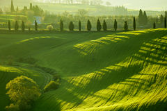 San Quirico d`Orcia , Tuscany, Italy Stock Images
