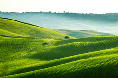 San Quirico d`Orcia , Tuscany, Italy Royalty Free Stock Image