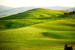 San Quirico d`Orcia , Tuscany, Italy Royalty Free Stock Images