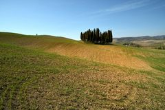 SAN QUIRICO D`ORCIA, TUSCANY / ITALY - MAR 31, 2017: beautiful tuscan landscape near San Quirico d`Orcia, with green rolling hills Stock Images