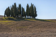 SAN QUIRICO D'ORCIA, TUSCANY / ITALY - OCTOBER 31, 2016: Beautiful tuscan landscape near San Quirico D'Orcia Royalty Free Stock Photos