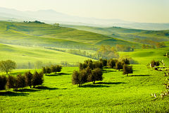 San Quirico´Orcia , Tuscany, Italy Royalty Free Stock Photos