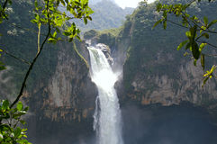 San Rafael falls ecuador Royaltyfri Bild