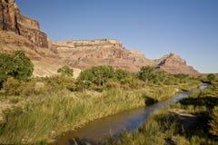 San Rafael River in Utah. River in Southern Utah's San Rafael Swell desert at the entrance to Buckhorn Wash Stock Images