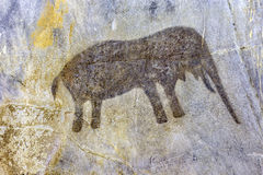San Rock Painting. South Africa, Cango Caves. Rock painting of an elephant by Bushmen the San people Stock Photo
