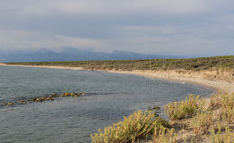 San Rossore Regional Park coastline with deserted sandy beach and mountains landscape Stock Image