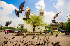 San salvador Royalty Free Stock Photo