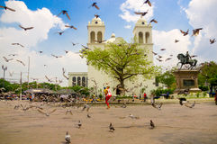 San salvador. El Salvador - May-04-2014 Front view of the Cathedral in the citys main square with pigeons Stock Photo