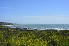 San Simeon Coastline a marzo Immagini Stock