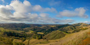 San Simeon Hills. Rolling green hills lead to the Pacific Ocean in the distance of central California Royalty Free Stock Photo