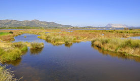 San Teodoro pond. On a beautiful sunny day Royalty Free Stock Photography