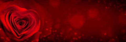 San Valentino Rosa immagini stock