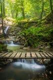 Sanang manora瀑布, Phang Nga,泰国 库存图片